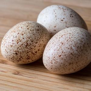 Яйцо индейки.